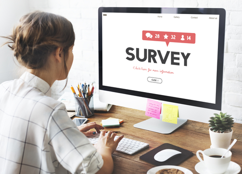 Survey on female angel investment